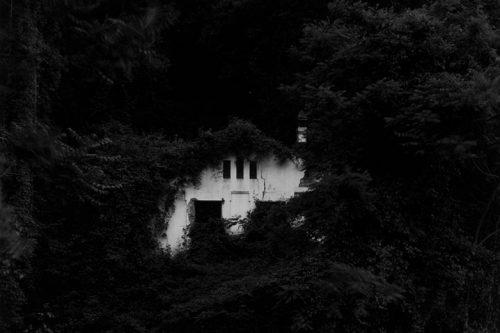 Mor Humberto Rivas, el fotògraf del silenci