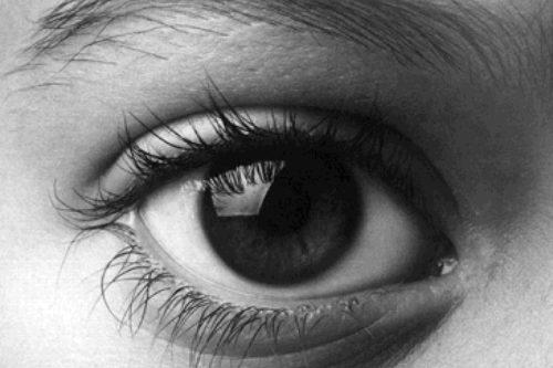 Concurs de microrelats, Canviant la mirada
