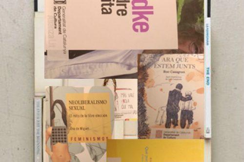 Benvinguts llibres, arribats per la subvenció del Departament de Cultura de la Generalitat de Catalunya